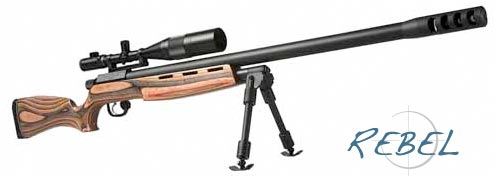 Remington 770 Stock